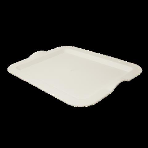 Поднос прямоугольный 46,5х36,5х3,5 см белый Алеана 167404